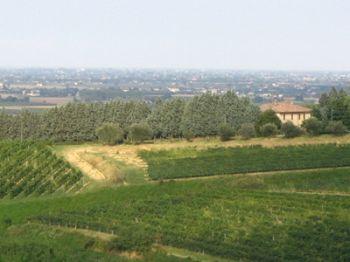 panorama0_20071217_1520628301